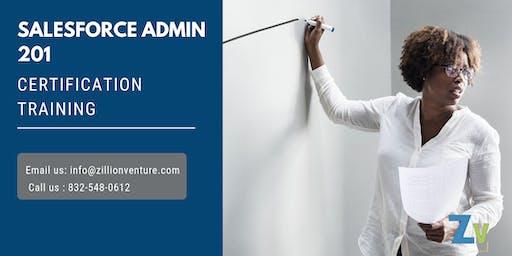 Salesforce Admin 201 Certification Training in Percé, PE