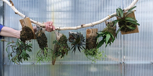 Plant Mounting Workshop with CleverBloom