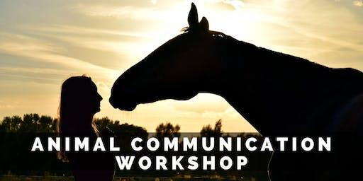 Animal Communication Workshop