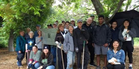 Native Plant Gardening Party at Pinole Library 2019-11-16 tickets