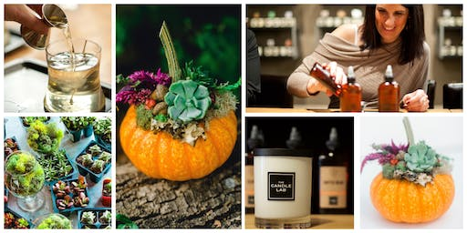 Scents & Pumpkin Succulents