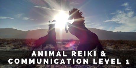 Animal Reiki & Communication Level 1 tickets