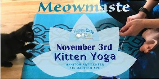 Kitten Yoga November Session