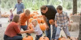 Haunted Pumpkin Patch Free Entry*