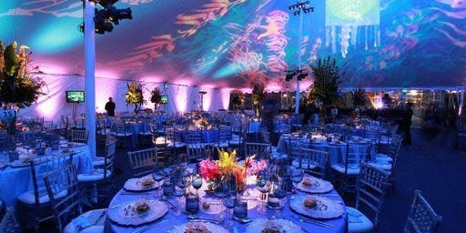 """Night Under the Sea"" First Annual Black Tie Gala & Silent Auction"
