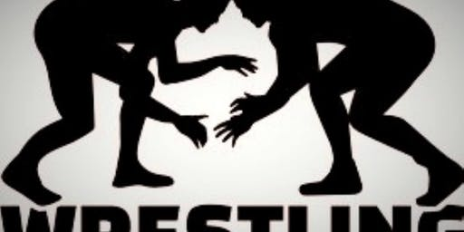 Wrestling Camp and Training