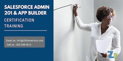 Salesforce Admin 201 & App Builder Certification Training in Sainte-Anne-de-Beaupré, PE