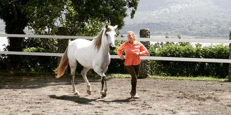 Carolyn Resnick Method Liberty Training®/ 3 Day Clinic tickets
