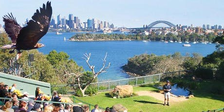 UTS INSEARCH - TARONGA ZOO tickets