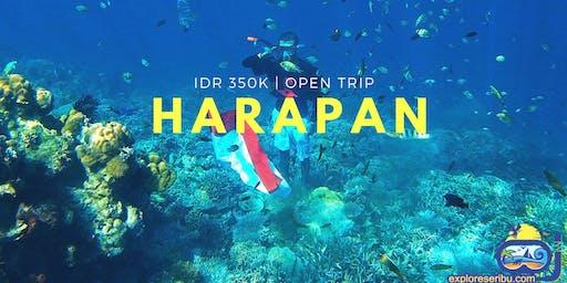 Open Trip Pulau Harapan Jakarta IDR 350K/person