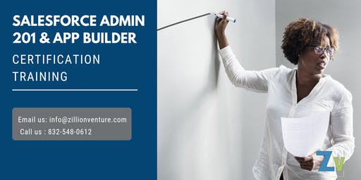 Salesforce Admin 201 & App Builder Certification Training in West Nipissing, ON