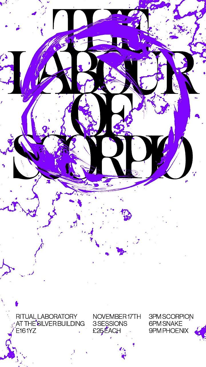 The Labour of Scorpio image