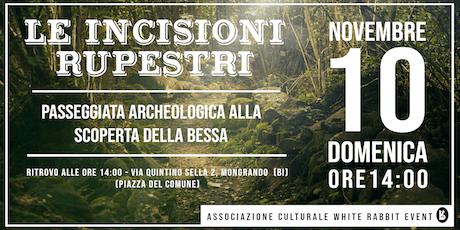 LE INCISIONI RUPESTRI - Passeggiata archeologica alla scoperta della Bessa biglietti
