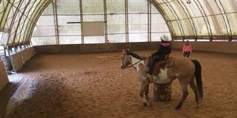 Veterans Day Horseback Riding Camp
