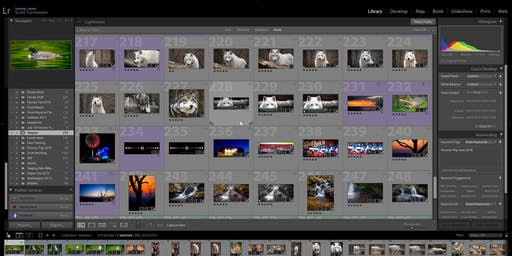 Editing Your Photography Class: Beginner Adobe Lightroom