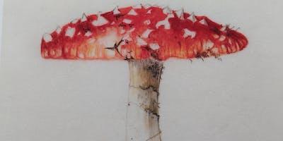 Botanical painting workshop on Vellum: Christmas Rose, Berries & Fungi watercolour painting on VELLUM
