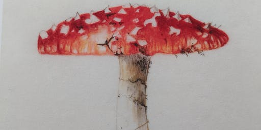Botanical painting workshop on Vellum: Christmas Rose, Berries & Fungi watercolour painting on VELLUM