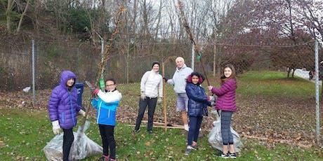 Make Ambler a Shade Better Tree Planting tickets