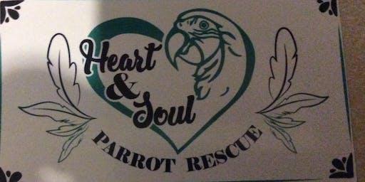 Parrot class