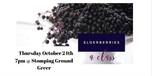 Elderberry Class - Staying Healthy When Everyone else isn't.
