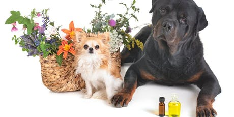 Beginners Aromatherapy for Dogs tickets