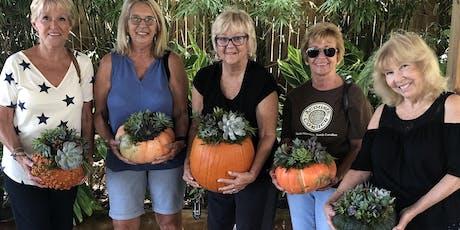 Advent Lutheran Church Succulent Pumpkin Workshop tickets