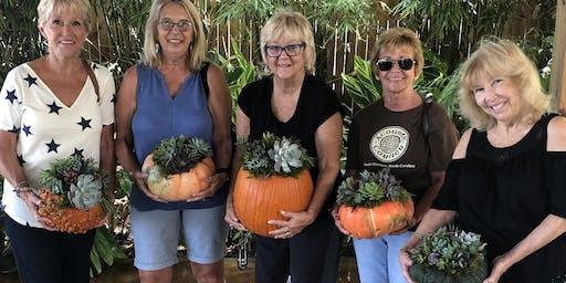 Advent Lutheran Church Succulent Pumpkin Workshop