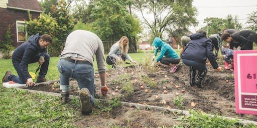 NW Goldberg Cares: Fall Neighborhood Clean Up