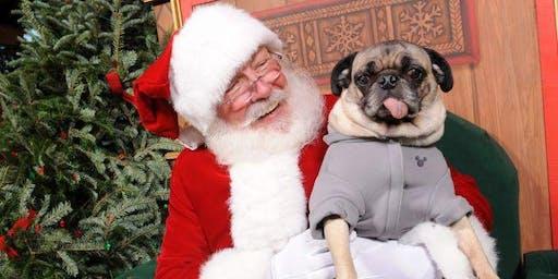 Pet Photos with Santa!