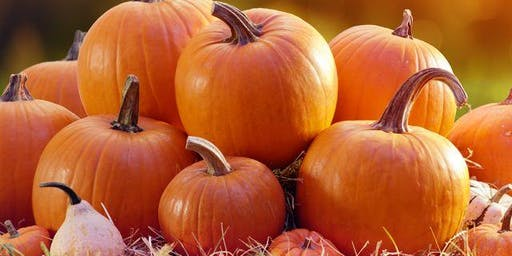 Let's (Pumpkin) Spice Things Up