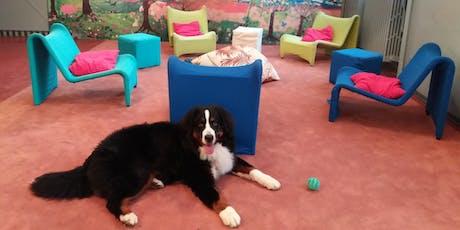 A spasso con Balto - Pet Therapy per bambini biglietti