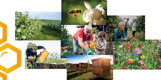 Conférence Bee Mayenne : Sauver les abeilles et la biodiversité