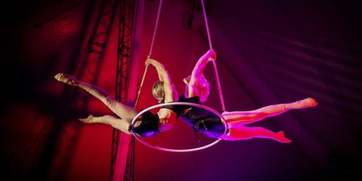 The Madonna Circus: Reinvention | MA15+