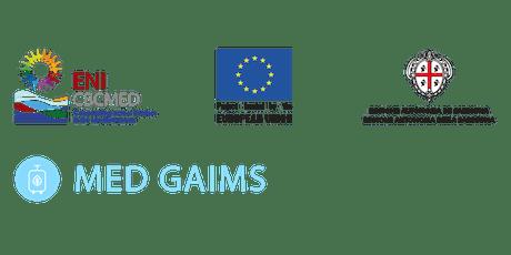 MED GAIMS Technical Seminar & Workshop tickets