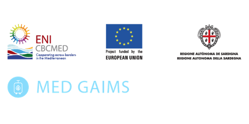 MED GAIMS Technical Seminar & Workshop