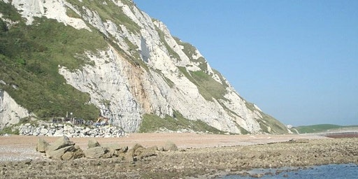 Samphire Hoe, Kent - GEOLOGICAL AND FOSSIL FIELD TRIP