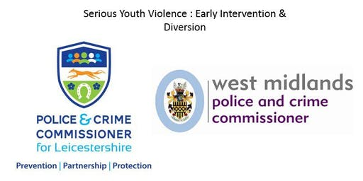 Serious Youth Violence: Early Intervention & Diversion