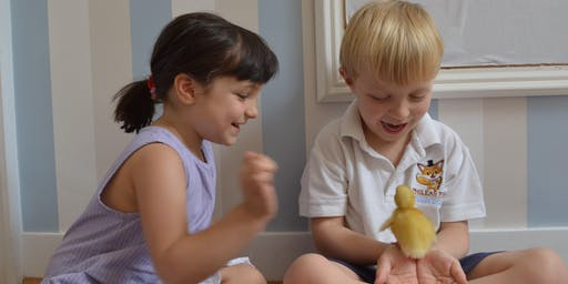 Phileas Fox Nursery School Open Morning