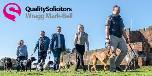 Wag Mark-Bell Dog-Walk Networking