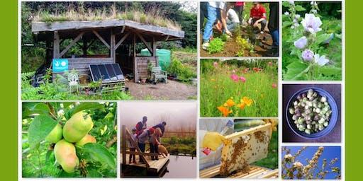 Community Woodland Networking Day: Coeden Fach Tree Nursery