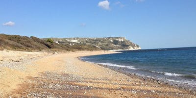 Ringstead Bay, Dorset - GEOLOGICAL AND FOSSIL FIELD TRIP