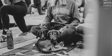 Rescue Dog Yoga and Beers! tickets