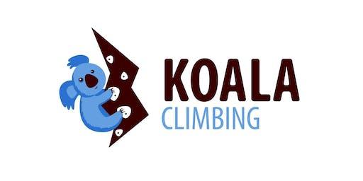 Koala Climbing Pallasti
