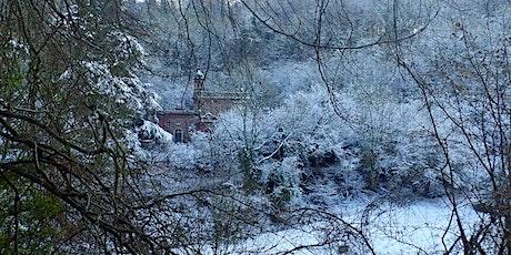 Explore Dancersend Woods in Winter tickets