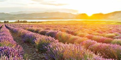 Aromatag in Ahlden - Natürliche Gesundheit für Körper, Geist und Seele