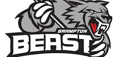 Brampton Beast Vs Worcester Railers: Diwali Night