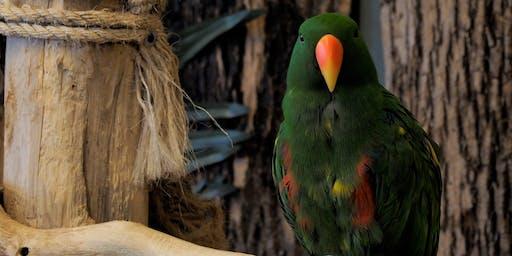 Photo Safari at Niagara Falls Bird Kingdom
