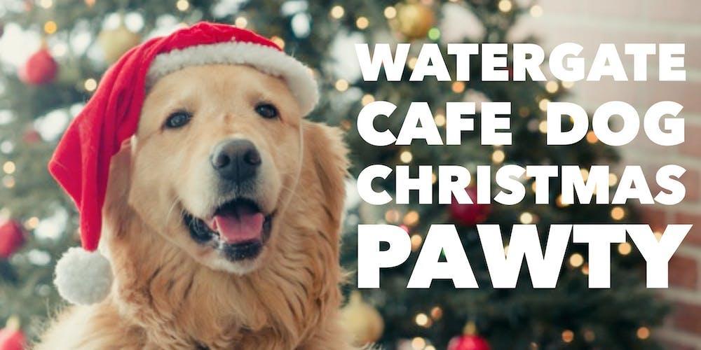 Christmas Dog.Watergate Cafe Dog Christmas Pawty