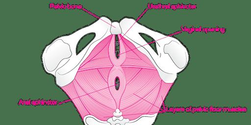 Yoga for Pelvic Floor Strength