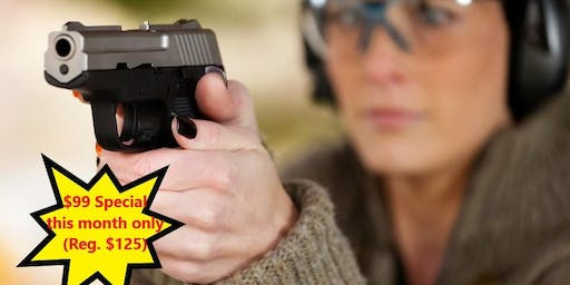 Basic Pistol Training + CCW Certification